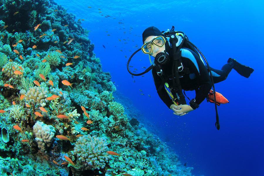 professional diver